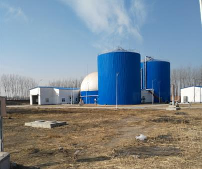 biogas assembled tank price